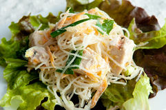 Asian style chicken salad Royalty Free Stock Photography