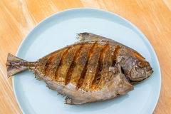 Asian style deep fried pomfret on dish in wooden table backgroun Royalty Free Stock Images