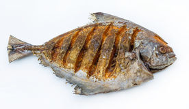 Asian style deep fried pomfret in isolated background Royalty Free Stock Photography