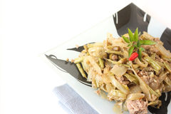 Asian style dish with vegetables and tuna fish Royalty Free Stock Image
