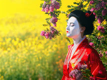 Asian style female portrait. Portrait of a woman in geisha makeup smelling the flowers royalty free stock photo