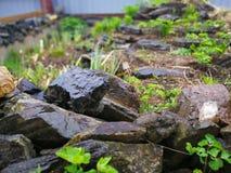 Stones in the public garden stock photo