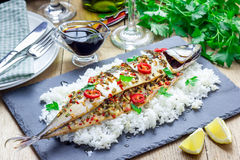 Asian style mackerel baked with ginger, red chili, coriander and spring onion. On a bed of fluffy rice Royalty Free Stock Photo