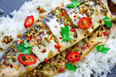 Asian style mackerel baked with ginger, red chili, coriander and spring onion. On a bed of fluffy rice Royalty Free Stock Images