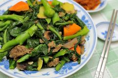 Asian style mixed vegetable delicacy. Cooked with leafy vegetables, mushrooms, carrots, and slices of ginger Royalty Free Stock Images