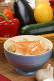 Asian style noodle chicken soup Royalty Free Stock Photos