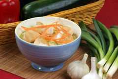 Asian style noodle chicken soup Royalty Free Stock Images