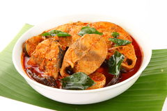 Asian style tuna fish curry.served in white bowl. Stock Photography