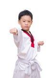 Asian taekwondo boy Stock Photography