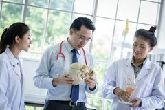 Asian teacher has teaching to student about science and anatomical in laboratory. Anatomy background biology black body bone brain care class classroom college stock images
