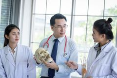 Asian teacher has teaching to student about science and anatomical in laboratory. Anatomy, background, biology, black, body, bone, brain, care, class royalty free stock images
