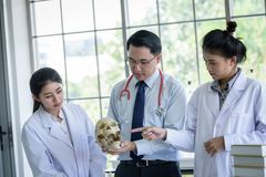 Asian teacher has teaching to student about science and anatomical in laboratory. Anatomy background biology black body bone brain care class classroom college stock image