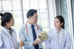 Asian teacher has teaching to student about science and anatomical in laboratory. Anatomy, background, biology, black, body, bone, brain, care, class stock photos