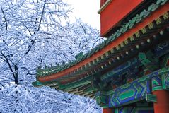 Asian temple in winter garden stock photo