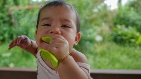 Baby girl chewing toy. Asian Thai baby girl chewing toy royalty free stock photography
