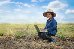 Asian Thai farmer using laptop computer in the rice field with h Stock Photo