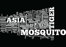 Asian Tiger Mosquito Word Cloud Concept Stock Photography