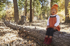 Asian toddler girl sitting in a forest looking to camera Royalty Free Stock Image