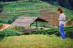 Asian tourists woman on view point at Tea garden doi angkhang T. Portrait of Asian tourists woman on view point at Tea garden doi angkhang Thailand royalty free stock photos
