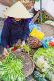 Asian trader selling fresh green garden stuff in street market Stock Image