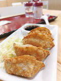 Asian tradition food, Gyoza royalty free stock photo