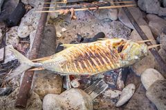Asian traditional grilled fish stock photography