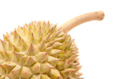 Asian tropical fruit known as Durian Royalty Free Stock Photo