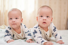 Asian twin boys Royalty Free Stock Images