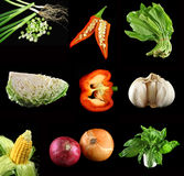 Asian Vegetables Royalty Free Stock Photography