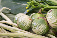 Asian vegetables. Thai eggplant, long beans and yu choy greens Stock Photos