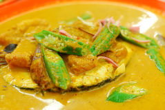 Asian vegetarian fish curry Royalty Free Stock Images