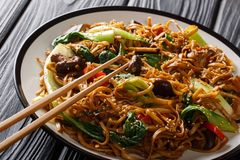 Asian vegetarian food udon noodles with baby bok choy, shiitake mushrooms, sesame and pepper close-up on a plate. horizontal. Asian vegetarian food udon noodles royalty free stock photography