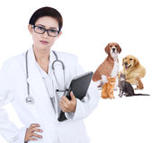 Asian vet holding tablet Royalty Free Stock Image