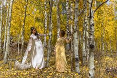 Asian Vietnamese bride with mother in traditional Vietnamese wedding dresses in the yellow autumn aspen trees of Colorado stock photos