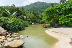 Asian village in the jungle on the shore of a green river stock photos