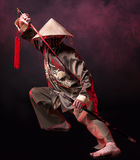 Asian warrior Royalty Free Stock Images