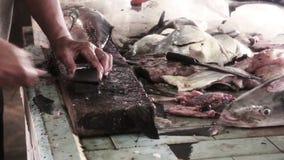 Asian Wet Market stock video