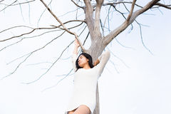 Asian woman and A bare tree Stock Image