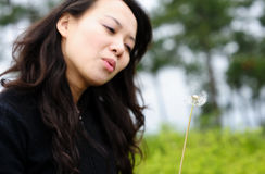 Asian woman and dandelion Royalty Free Stock Images