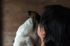 Asian woman hugging dog so cute chihuahua breed stock photo