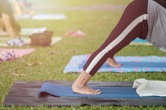 Asian woman doing yoga or exercise in the park Royalty Free Stock Images