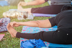 Asian woman doing yoga or exercise in the park Royalty Free Stock Photo