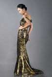 Asian woman in evening dress Royalty Free Stock Photography