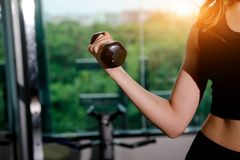 Asian woman exercising in the gym. Young woman workout in fitness for her healthy and office girl lifestyle Stock Image