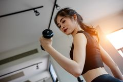 Asian woman exercising in the gym. Young woman workout in fitness for her healthy and office girl lifestyle Royalty Free Stock Image