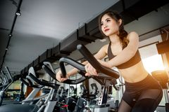 Asian woman exercising in the gym. Young woman workout in fitness for her healthy and office girl lifestyle Royalty Free Stock Photo