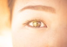 Asian woman eye close up. Concept about beauty, ethnicity, and people royalty free stock images