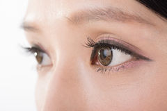 Asian woman eyes Stock Image