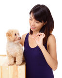 Asian woman feeding poodle. Isolated on white background Royalty Free Stock Images
