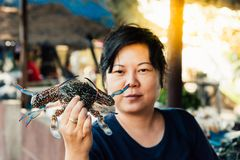 Asian woman and flower crab at Thai seafood market. Asian woman plump body holding a fresh raw sea flower crab & x28;portunus pelagicus& x29; premium grade Royalty Free Stock Photos